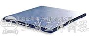 小电子地磅,上海亚津电子地磅
