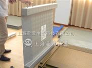 电子地磅,2吨地磅专业生产可靠的质量衡器