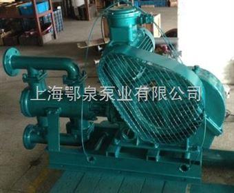 WBR型高温电动往复泵