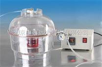 M395999 真空干燥器  CN60M/M395999