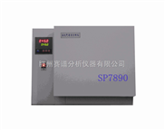 二甲醚检测专用气相色谱分析仪
