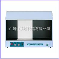 YB-3澄明度檢測儀/YB-3澄明度檢測儀