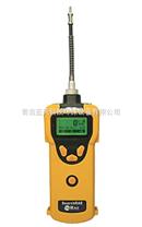 PGM-1600,PGM-1600,美国华瑞PGM-1600可燃气/毒气复合气体检测仪