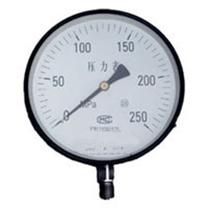 Y200/250MPa型特规压力表