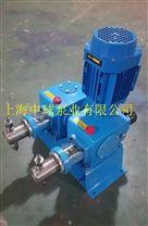 2J-X双泵头柱塞式计量泵
