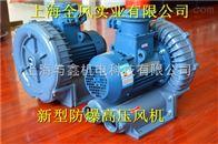 煤气输送专用-4KW防爆高压风机