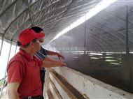 养殖场喷雾降温设备
