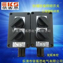BZM8050-10A/220V防爆防腐雙聯照明開關IP65