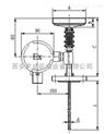 WSS-312-WSS-411热套式双金属温度计WSS-506