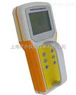SW83B 型 β、γ射线检测仪