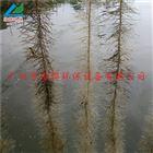 生物净水栅栏|鱼池栅栏