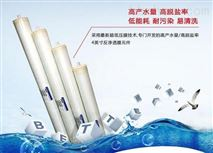 二級反滲透純化水,反滲透純化水係統