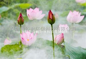 云南大理旅游景区景观造雾设备