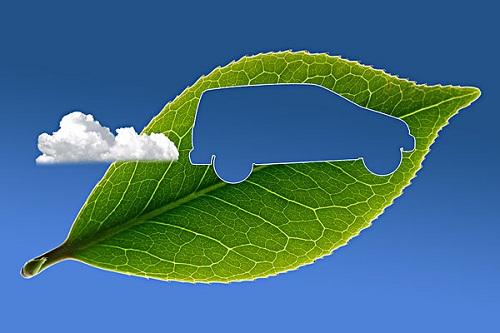背景 壁纸 绿色 绿叶 树叶 植物 桌面 500_333