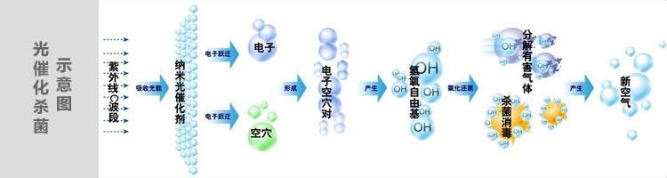 因游离氧所携正负电子不平衡所以需与氧分子结合,进而产生臭氧.