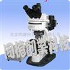 SM-XSP-BM21AY三目荧光显微镜