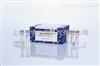 小鼠解整合素样金属蛋白酶8(ADAM8)ELISA试剂盒(定量/定性)